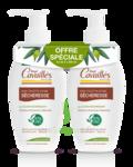 Acheter Rogé Cavaillès Hygiène intime Soin naturel Toilette Intime Sécheresse 2Fl/250ml à La Teste-de-Buch